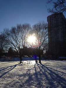 A park in winter