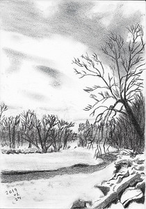 Winter Forms In Tinted Charcoal