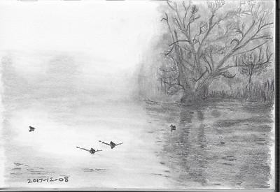 Foggy Riverside Scene