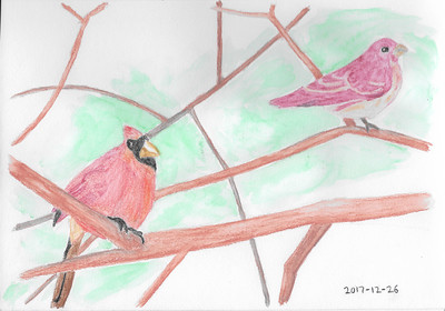 Cardinal and House Finch