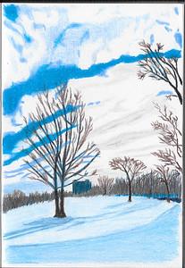 Tom Riley Park In Winter