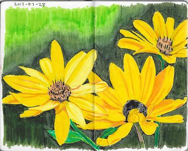 Sun Flower Trio