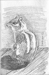 Sitting Chipmunk (20-minute sketch)
