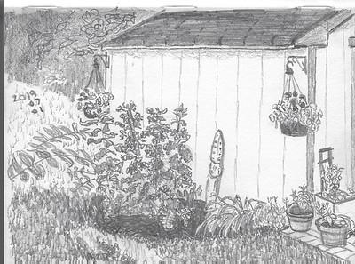 Backyard Plein Air Sketch