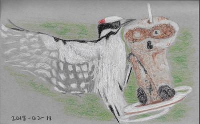 Downy Woodpecker Landing on the Feeder