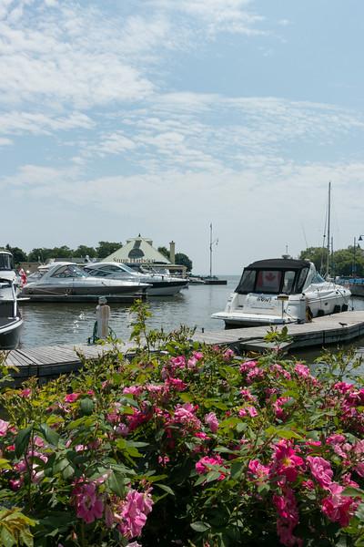 Port Credit Marina