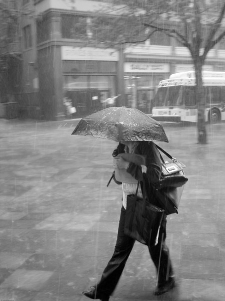 If you're going to carry that many bags, maybe you should invest in a bigger umbrella.