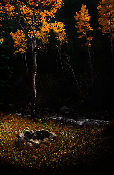 I shot this a while back on drive through the mountains. I like the general late fall, end of the season moodiness to it.