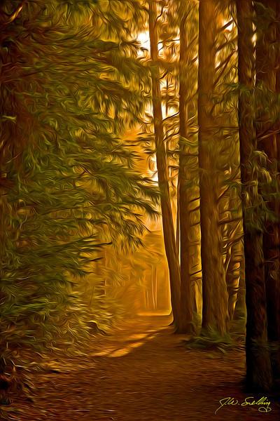 Foggy Path-stylized