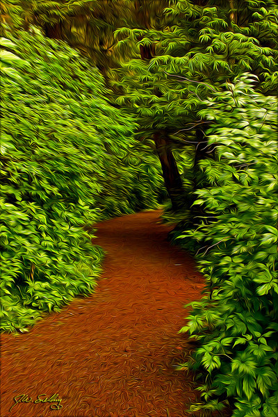 Rainyday Path-stylized