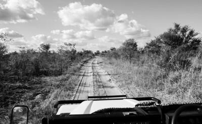 Through the trails of Zimbabwe