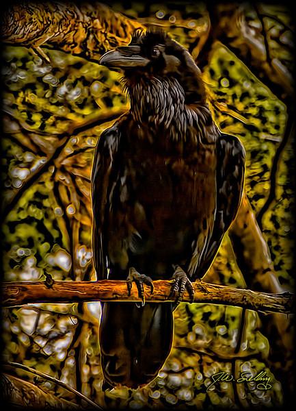 Raven A Stylized