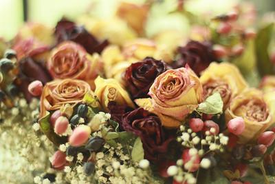 { Macro - Dried Flowers - 201206 }