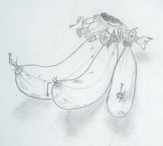 { sketch-y }
