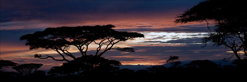 Tanzania Sunrise #1