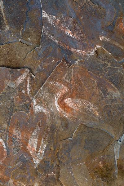 Birdman Cave Paintings #1