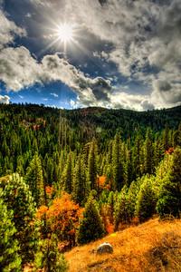 Sierra Hills off Hwy 50