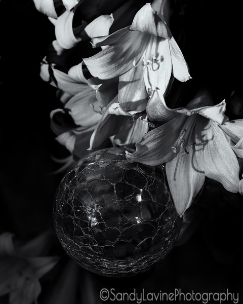 Flowers and Globe Two