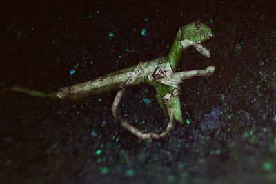 Green monster in a wheelchair