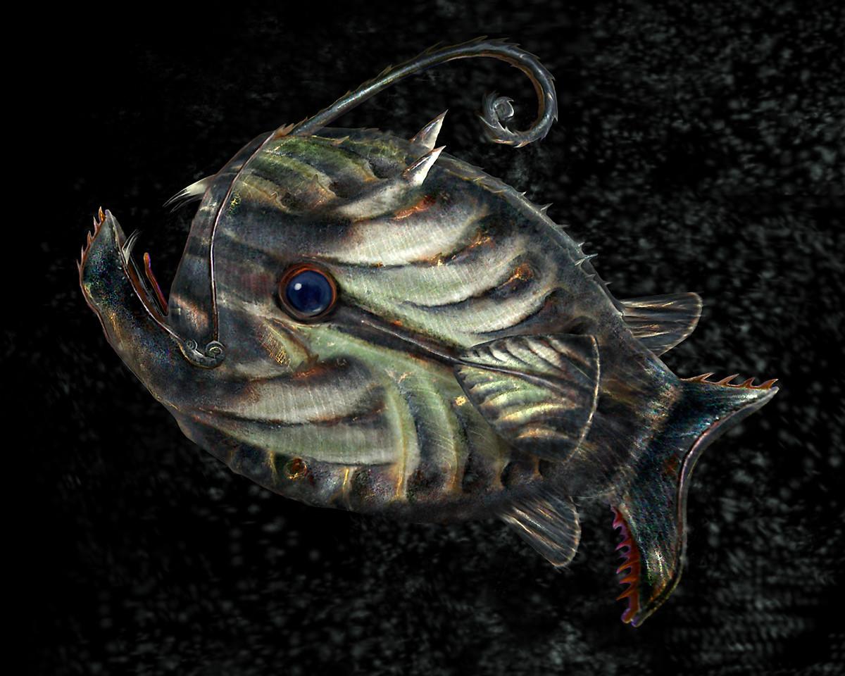 Primordial Pitcher Fish