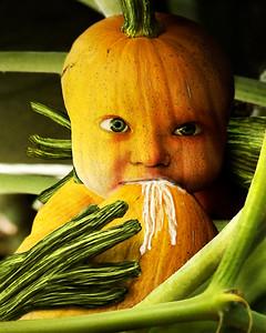 Baby Peter Pumpkin Eater