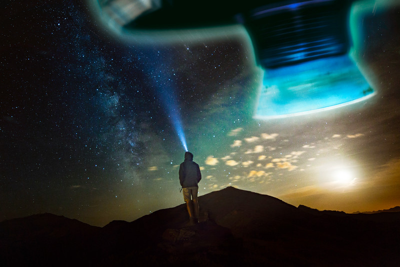 The Search for Unintelligent Life