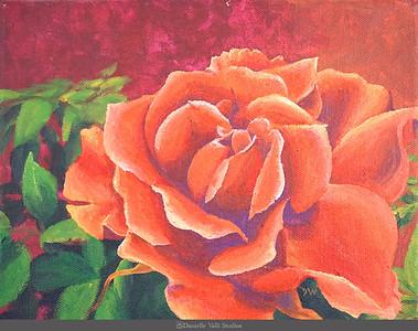 Orange Rose (Rose III)
