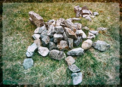 Rock Turtles - behind