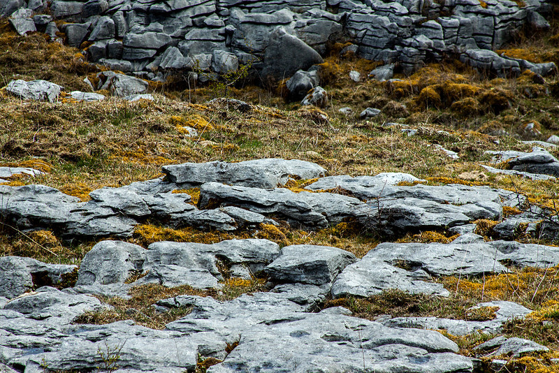 The Burren Limestone