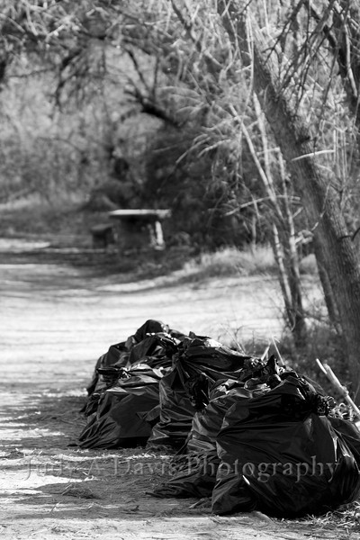 Black bags in Sabino Canyon, Tucson, Arizona