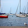 Red Sailboat<br /> Chicago