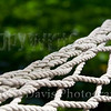 "Hammock<br /> <br />  <a href=""http://www.flickr.com/photos/judyadavisphotography/3622717117/"">http://www.flickr.com/photos/judyadavisphotography/3622717117/</a>"