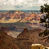 Many Tiers<br /> Awe-Inspiring Grand Canyon in Arizona, Judy A Davis Photography, Tucson, Arizona