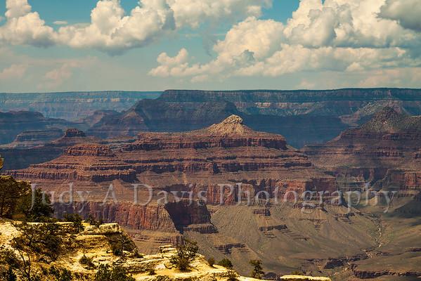 Golden Light Awe-Inspiring Grand Canyon in Arizona, Judy A Davis Photography, Tucson, Arizona