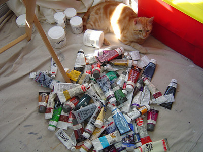 iko, the other studio assistant...the paint inventory helper:)
