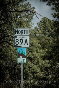 Backroads-4918