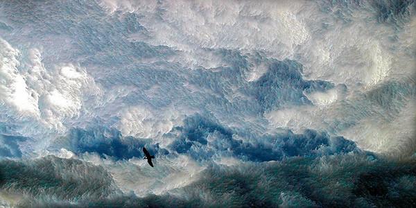 Eagle In Silver Sky