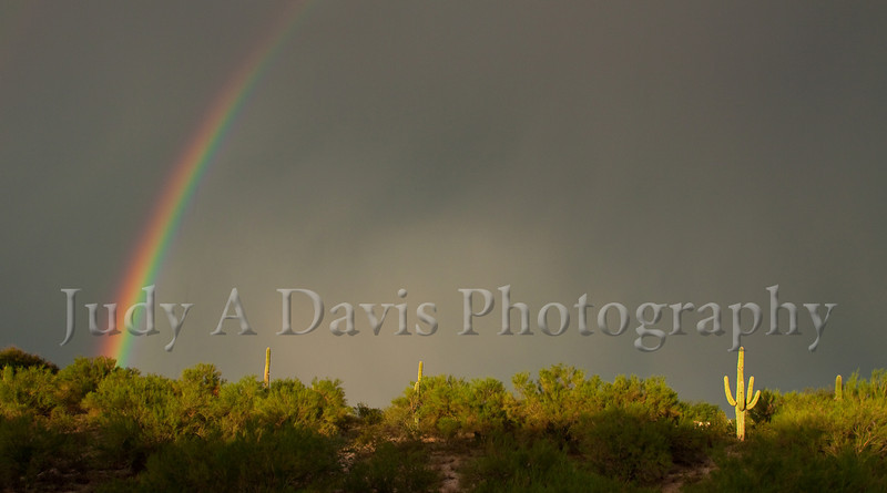 Rainbow in Tucson, Arizona, Judy A Davis Photography
