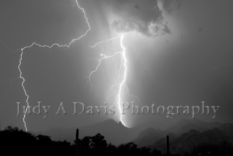 Monsoon Season. Lightening illuminates the  nighthawks over the Santa Catalinas. Judy A Davis Photography