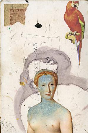 Parrot Queen (5x7)