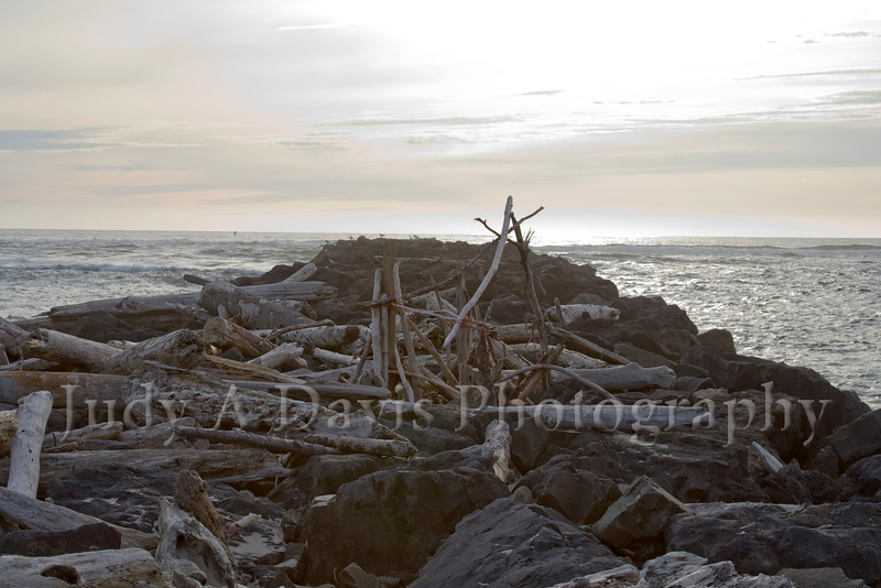 Driftwood on the Oregon coast