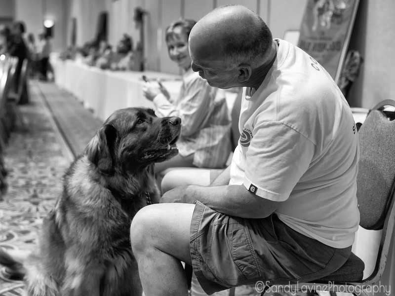 Marty and Leonberger