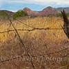 Oak Creek Recreation Area, Sedona, Arizona