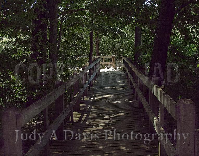 Walk to the Beach, Lake Michigan,<br /> Duck Lake State Park, Muskegon, Michigan