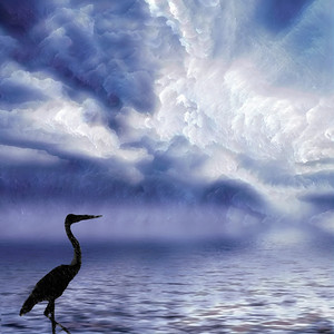 Heron in Blue