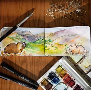 Colorado-Watercolor-Sketchbook-21