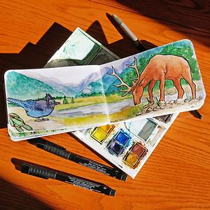 Colorado-Watercolor-Sketchbook-20