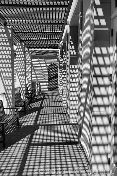 Sterling Vineyard Walkway