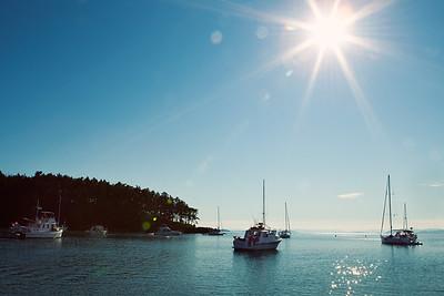 Shallow Bay