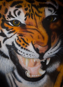 Airbrushed on canvas , Tiger 36x40